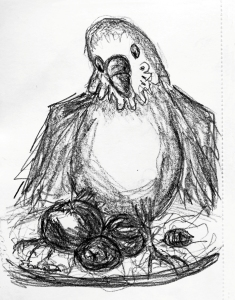 pencil drawing of budgie sitting in a salad