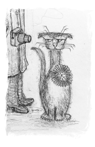 drawing cat and photographer