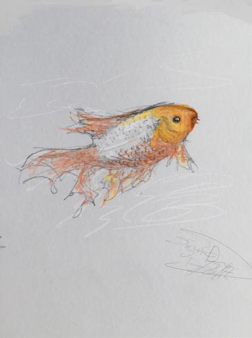 fish1-3