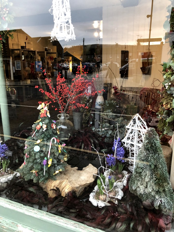 shop front with small artificial trees and plants